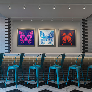 TS24 Track Surface